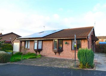 Thumbnail 2 bed bungalow for sale in Sycamore Close, Hull, East Riding Of Yorkshire
