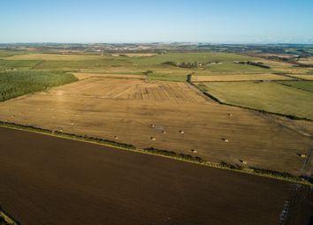 Thumbnail Farm for sale in Newburgh, Ellon