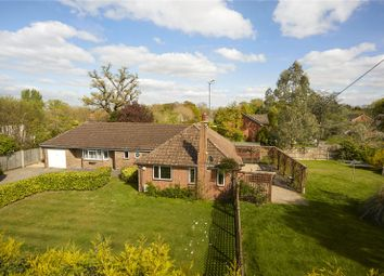 Thumbnail 4 bed detached bungalow for sale in The Street, West Clandon, Guildford, Surrey