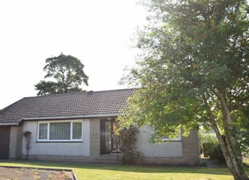 Thumbnail 2 bed detached bungalow to rent in Carnwath Road, Elsrickle, Biggar
