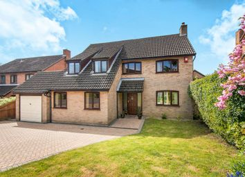 Thumbnail 4 bed detached house for sale in Armitage Close, Cringleford, Norwich, Norfolk