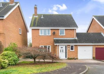 Thumbnail 4 bed link-detached house for sale in Blofield, Norwich, Norfolk