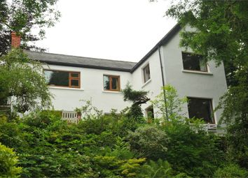 Thumbnail 3 bed detached house for sale in Ystumtuen, Aberystwyth, Ceredigion