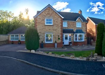 Thumbnail 4 bed detached house for sale in Halkirk Gate, Blantyre