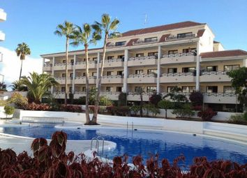 Thumbnail Studio for sale in Playa De Las Americas, Spain