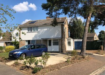 Thumbnail 4 bed detached house for sale in Nunsgate, Thetford