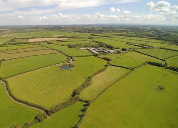 Thumbnail 12 bedroom farm for sale in Bridgerule, Holsworthy