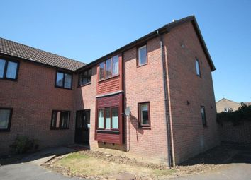 Thumbnail Studio for sale in Holly Walk, Ely
