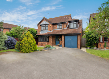 Thumbnail 4 bed detached house for sale in The Chase, Great Amwell, Ware