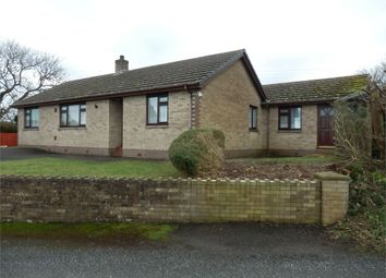 Thumbnail 4 bed detached bungalow for sale in Manwydd, Maenygroes, Nr New Quay, Ceredigion