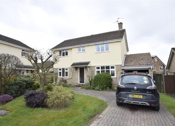 Thumbnail 3 bedroom detached house to rent in Agincourt Close, St Leonards-On-Sea, East Sussex