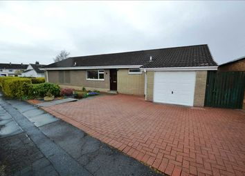 Thumbnail 3 bedroom bungalow for sale in Larch Grove, Hamilton