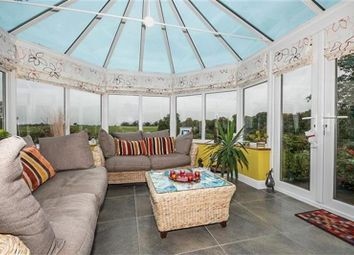 Thumbnail 4 bedroom detached house for sale in Walnut Close, Stretton, Oakham