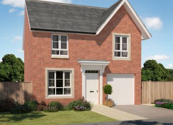 "Thumbnail 4 bed detached house for sale in ""Crichton"" at Ravenscliff Road, Motherwell"