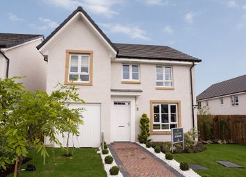 "Thumbnail 4 bedroom detached house for sale in ""Craigievar"" at Kirkton North, Livingston"
