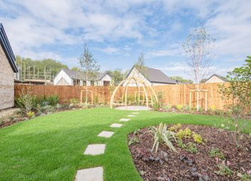 Thumbnail 5 bed detached house for sale in Boundary Lane, Hampton Vale, Peterborough