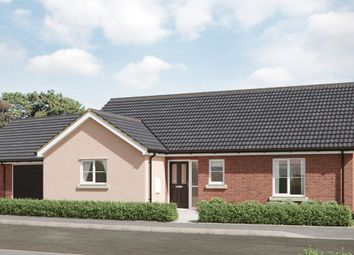 Thumbnail 3 bedroom bungalow for sale in Granger Close, Walsham Le Willows
