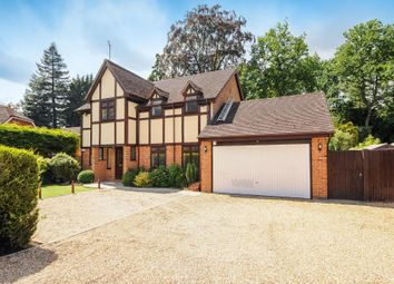 Thumbnail 4 bed detached house to rent in Holmes Close, Sunninghill
