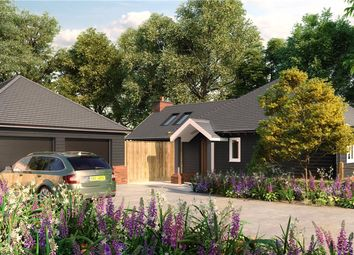 Thumbnail 3 bed bungalow for sale in Silverwood, Winchester Road, Fair Oak, Eastleigh
