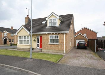 Thumbnail 4 bed detached bungalow for sale in Woodvale, Dromara, Down