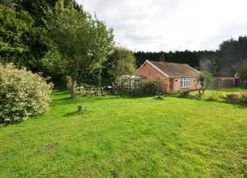 Thumbnail 2 bed detached bungalow for sale in Diss Road, Wattisfield, Diss