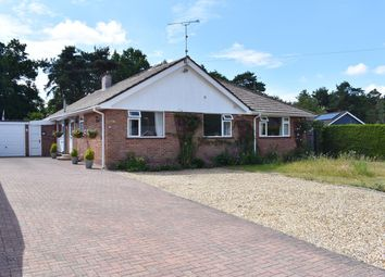 Webbs Close, Ashley Heath, Ringwood BH24. 4 bed detached bungalow