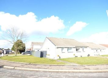 Thumbnail 2 bed semi-detached bungalow to rent in Aitken Road, Hamilton
