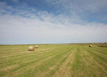 Thumbnail Land for sale in Boonland, Sanday, Orkney