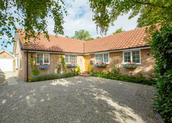 Thumbnail 4 bed detached bungalow for sale in Hambleton Garth, Easingwold, York