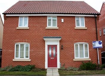Thumbnail 4 bed detached house to rent in Bayberry Close, Red Lodge, Bury St. Edmunds