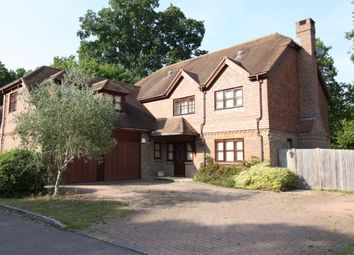 Thumbnail 5 bed detached house to rent in Oak Way, Ifold