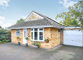 Thumbnail 4 bed detached bungalow for sale in Totham Hill Green, Great Totham, Maldon