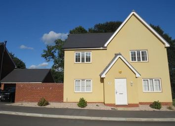 Thumbnail 4 bed detached house to rent in Pinnbridge Court, Old Pinn Lane, Exeter