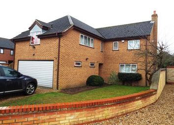 Thumbnail 4 bed property to rent in Homestead Drive, Beck Row, Bury St. Edmunds