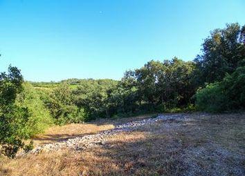 Thumbnail Land for sale in Besse-Sur-Issole, Var, France