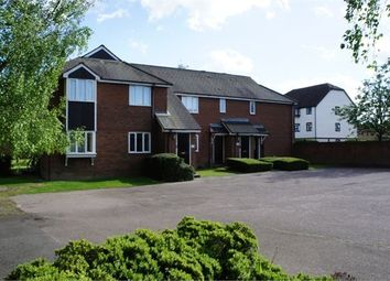 Thumbnail 1 bed flat to rent in Chinook, Highwoods, Colchester, Essex.