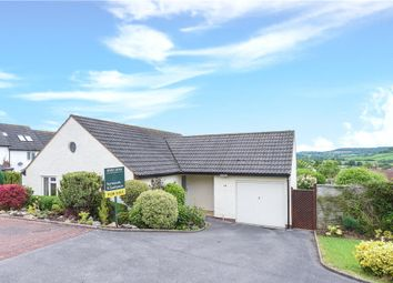 Thumbnail 2 bed detached bungalow for sale in St Johns Close, Colyton, Devon