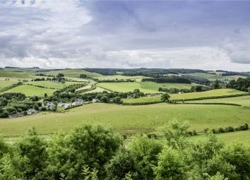 Thumbnail Land for sale in Land At Headshaw Farm, Ashkirk, Selkirk