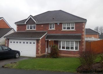 Thumbnail 4 bed detached house to rent in Cyril Evans Way, The Alders, Morriston, Swansea.