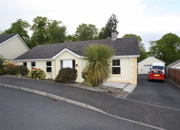 Thumbnail 3 bed detached bungalow for sale in Sycamore Court, Ballynahinch, Down