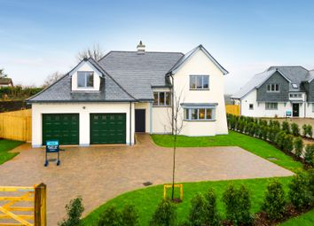 Thumbnail 5 bed detached house for sale in South Road, Newton Abbot