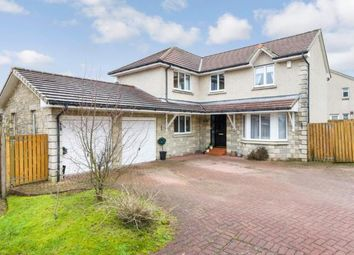Thumbnail 4 bedroom detached house for sale in Nicholson Place, Falkirk