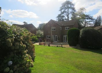 Thumbnail 4 bed detached house for sale in Haskells Close, Lyndhurst
