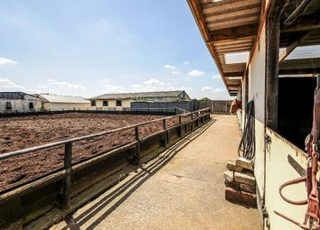 Thumbnail 4 bed equestrian property for sale in Higher Fold Farm, Windlehurst Road, High Lane, Stockport