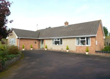 Thumbnail 3 bedroom detached bungalow for sale in Fairmile Gardens, Longford, Gloucester