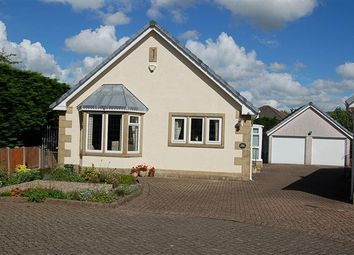 Thumbnail 2 bed bungalow for sale in Rivermead Court, Preston