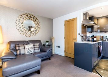 1 bed flat to rent in Reubens Court, Prospect Terrace, York YO1