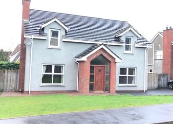 Thumbnail 4 bed detached house for sale in Cairn Hill, Newry