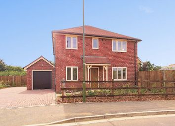 Thumbnail 4 bed detached house for sale in Mill Lane, Lyminster