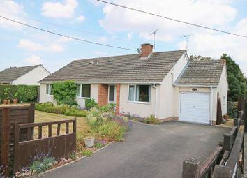 Thumbnail 3 bed detached bungalow for sale in Slough Green, Taunton